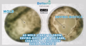 Biotica 800 Review – BetterAir's Probiotic Air Filter — Probiotics org